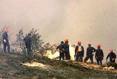 图文:消防人员全力扑灭飞机失事现场大火