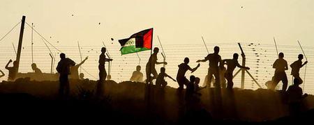 组图:巴以双方在加沙南部发生武装冲突