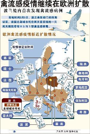 图文:禽流感疫情继续在欧洲扩散