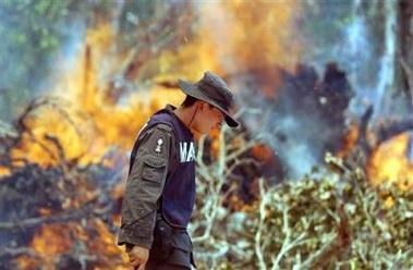 墨西哥森林大火殃及玛雅文明遗址(组图)