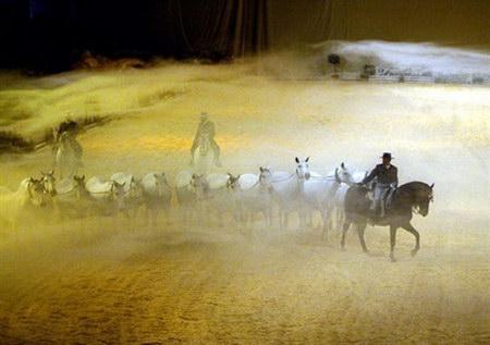 组图:西班牙举办世界良种马展览
