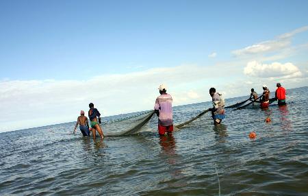 图文:莫桑比克渔民在首都马普托海滩用网捕鱼