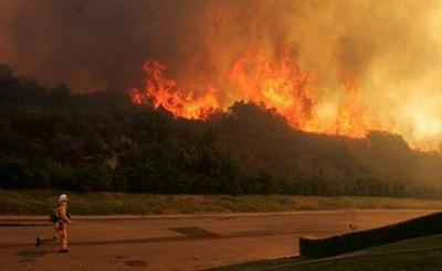 美国加州大火毁地近两千亩1200人撤离(组图)