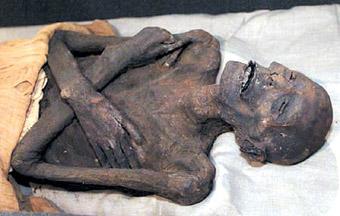 木乃伊重返埃及图片