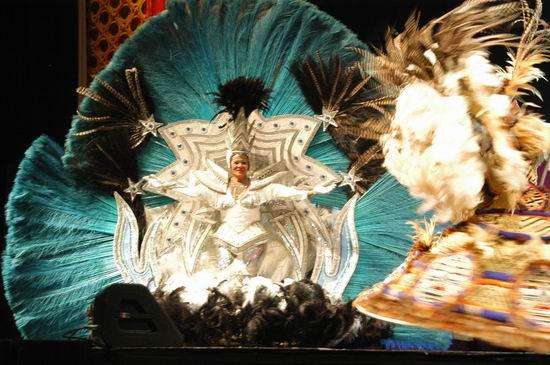资料图片:感知中国--中国文化巴西之旅(2)