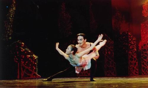 中外舞剧史上第一部全动物造型舞剧《野斑马》