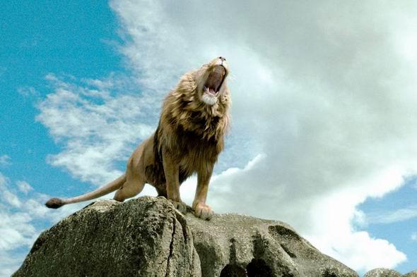 资料:《纳尼亚传奇:狮王、女巫和魔衣橱》剧照(46)