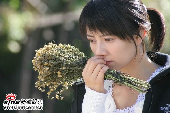 资料图片:高圆圆余文乐主演《男才女貌》剧照(24)