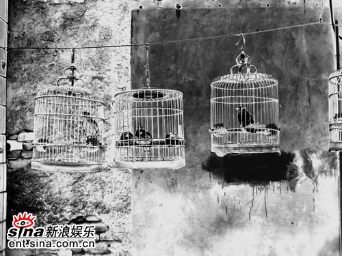 资料图片:中法文化交流之春-视觉艺术(31)