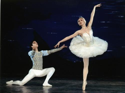 资料图片:芭蕾舞剧《天鹅湖》精彩剧照(15)