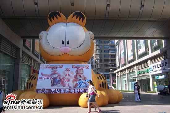东北最大的加菲猫落户长春路大连万达影城(图)