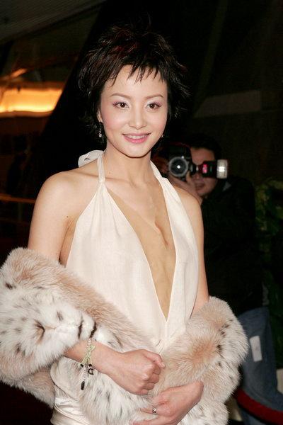 图文:第十届香港金紫荆奖揭晓陶红亮相红地毯