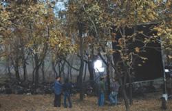 《无极》被指圆明园毁树剧组拍摄请求曾遭拒