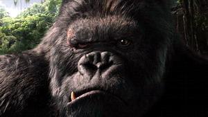 彼得两亿美元重拍《金刚》该片被中国引进(图)