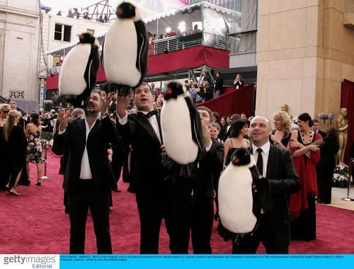 帝企鹅日记 剧组亮相人与企鹅同行