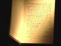图文:《东京审判》背景资料--梅汝�H日记