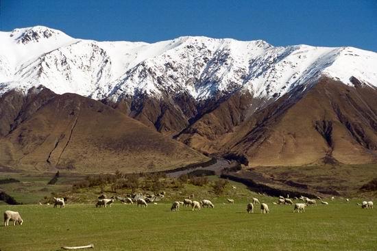 风景:图文中的草原顶级--雪山视频上传电影原图片