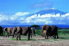 电影中的顶级风景--《走出非洲》(肯尼亚)