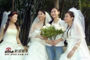 组图:张柏芝古天乐拍摄广告酬劳高达八位数字