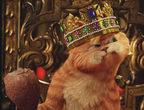 组图:动画片《加菲猫2:双猫记》精美壁纸