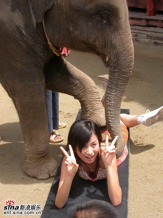 图文:唐嫣然泰国性感可爱拍外景--与大象亲热