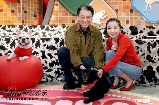组图:陶�窗职指挥诎�心曾收养三十多只流浪狗