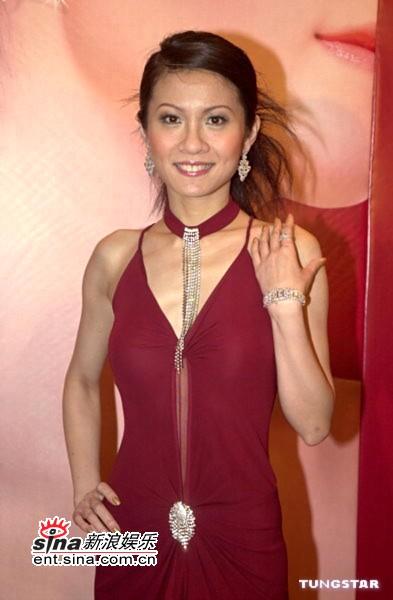 组图:陈炜黑色透视装出席亚洲小姐招募记者会