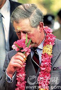 查尔斯王储再婚续闻卡米拉蜜月可能遭遇偷窥