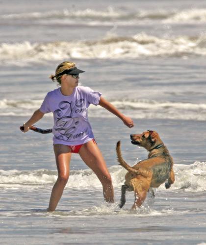 组图:塞隆海滩遛狗追逐嬉戏翘臀毕露性感撩人