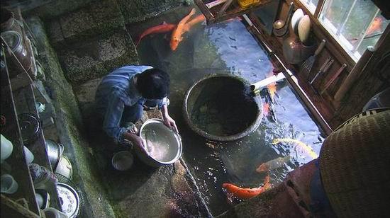 上海电视节日本纪录片《日本神秘的水世界》(图)