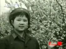组图:著名导演胡玫个人介绍及影视作品