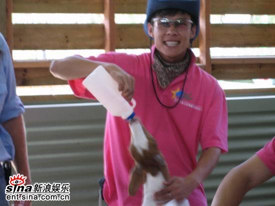 图文:青春之星农庄之旅--这个小羊怎么会说话