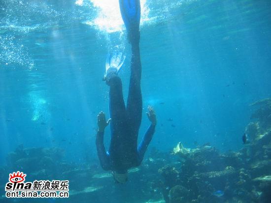 图文:青春之星澳洲之旅--深入水底