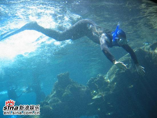 图文:青春之星澳洲之旅--探秘海洋
