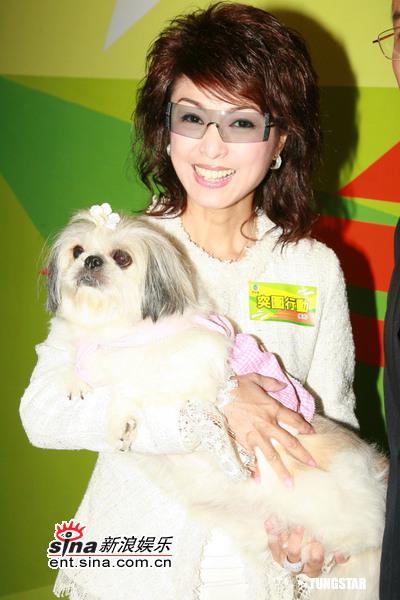 图文:TVB《突围行动》-米雪抱着宠物狗