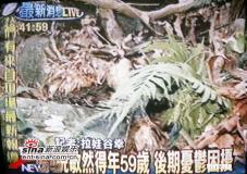 组图:台湾笑将倪敏然失踪两周后证实上吊身亡
