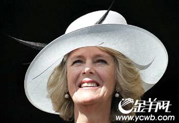 布莱尔为三年前冷战复仇二战纪念不让女王出席
