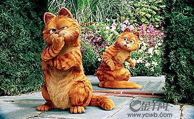 点评《加菲猫2》:像加菲那样生活