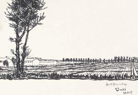 资料图片:窦唯早年绘画作品景意优雅宁静高远(5)