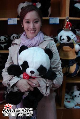 许慧欣成都之行圆梦与大熊猫亲密接触(附图)