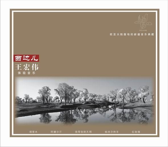西部歌王王宏伟北京签售演绎中国男版莎拉(图)