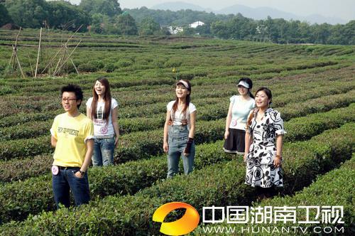 组图:超女杭州50强茶园拍摄宣传片歌红人更红