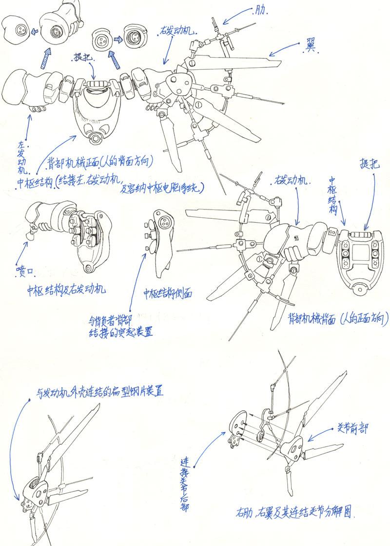 左腿结构图