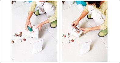 石膏海贝壳花盆的制作步骤