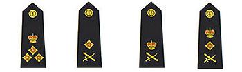 英王冠上的雄狮:英国皇家海军陆战队(组图)四