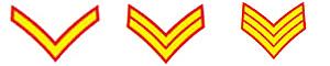 英王冠上的雄狮:英国皇家海军陆战队(组图)五