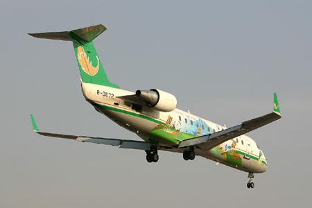 资料组图:失事的东航云南分公司CRJ200型飞机