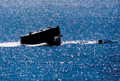 中国海军应拥有更先进的核潜艇(附图)