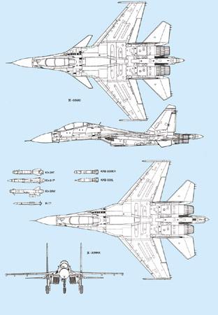印度使用苏-30MKI战机的经验和教训(组图2)