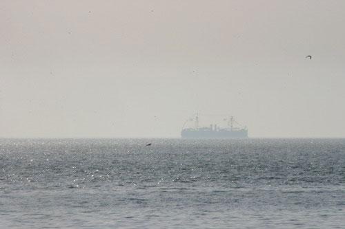图文:晨雾中的纪念舰